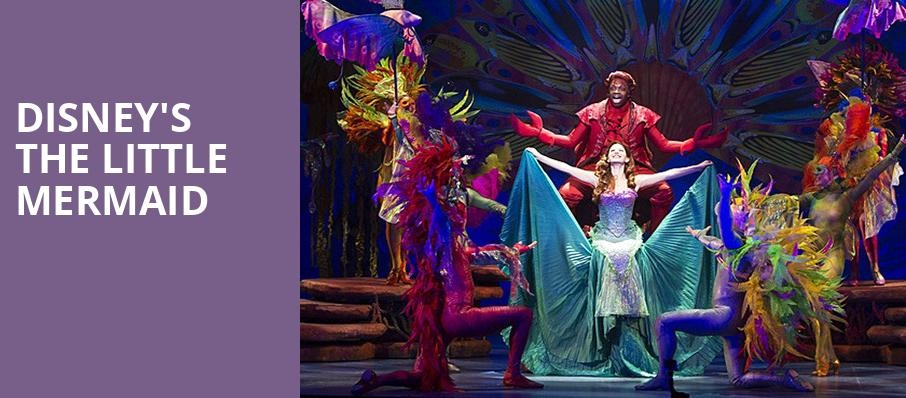 The Little Mermaid National Tour  Reviews